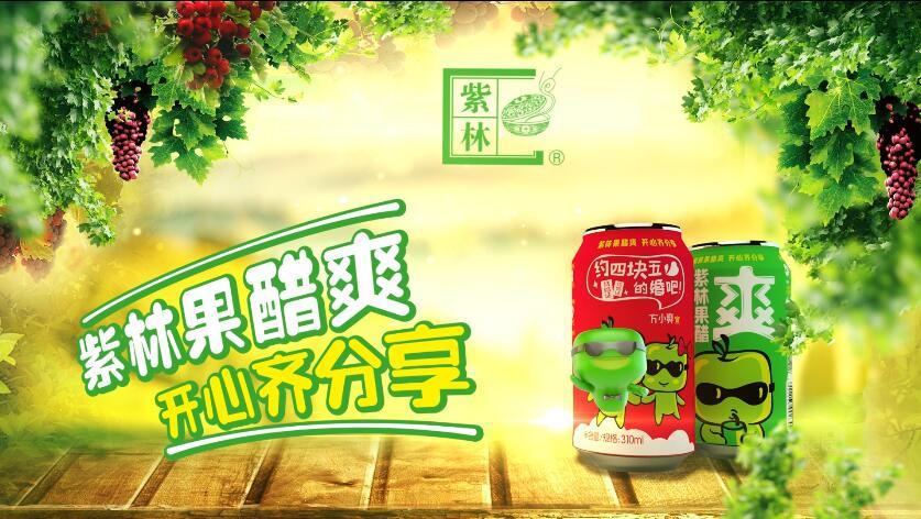 紫林集团方小爽果醋饮料产品展示片